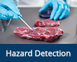 Hazard Detection