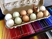 An 'Egg-stra' Splash Of Color