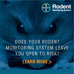 Bayer - Does your rodent monitoring system leave you open to risk?