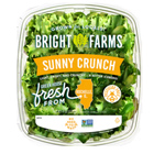 FDA, CDC Investigate Multistate Outbreak of Salmonella Linked to BrightFarms Salad Greens